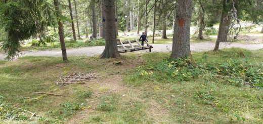Park Ivlje
