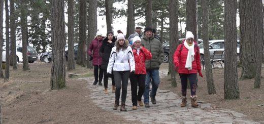 Šetnje kroz Taru