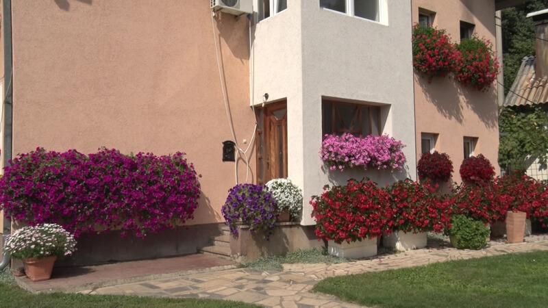 Kuća cveća Irena Savić