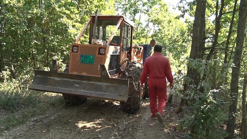 transport drva