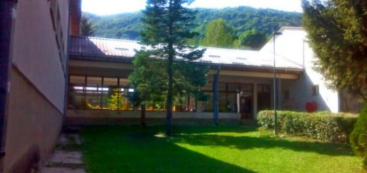 Osnovna škola Aleksa Dejović Krvavci