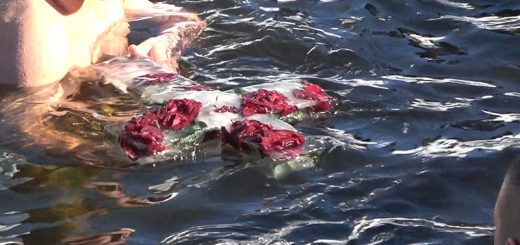 Časni krst