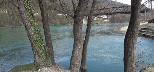 Drina