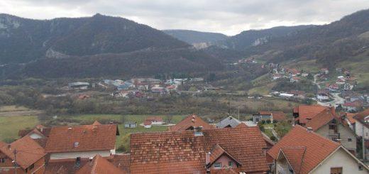 Turica